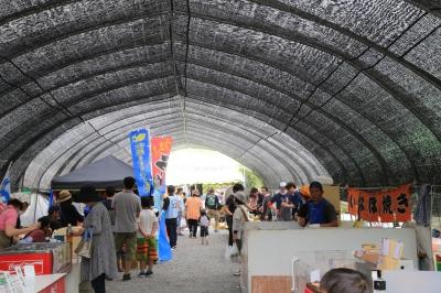 Nodake Tea Festival