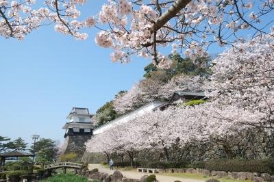 長崎県大村市で3月25日から6月20日まで行われる花の祭典です。大村公園は桜の名所だけでなく、約30万本の花菖蒲が咲き誇る九州最大規模の花菖蒲園、フジ、ツツジ、アジサイと途切れることなく訪れる人々の目を楽しませてくれます。