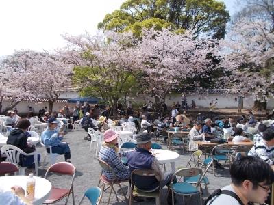 桜まつりでは、スイーツ販売やミニライブや大村フラワー大使選彰式など催しが行われます。